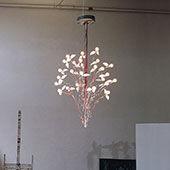 Lamp Birds Birds Birds