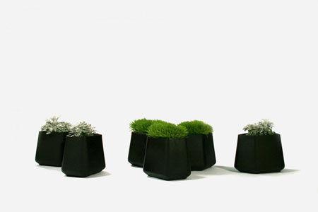 Vase Rock Garden