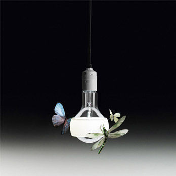 Lampe Johnny B. Butterfly