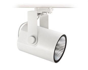 Lamp Ray