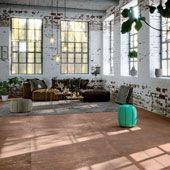 Collection Studio 50