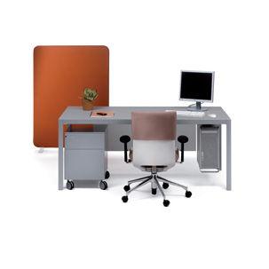 Desk Pey