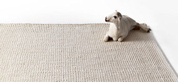 Teppich Punto