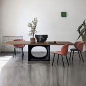 Table Holo